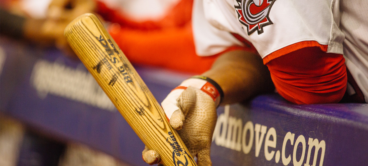baseball forever slideshow image